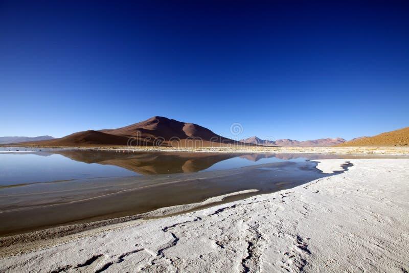 altiplano krajobraz zdjęcia stock