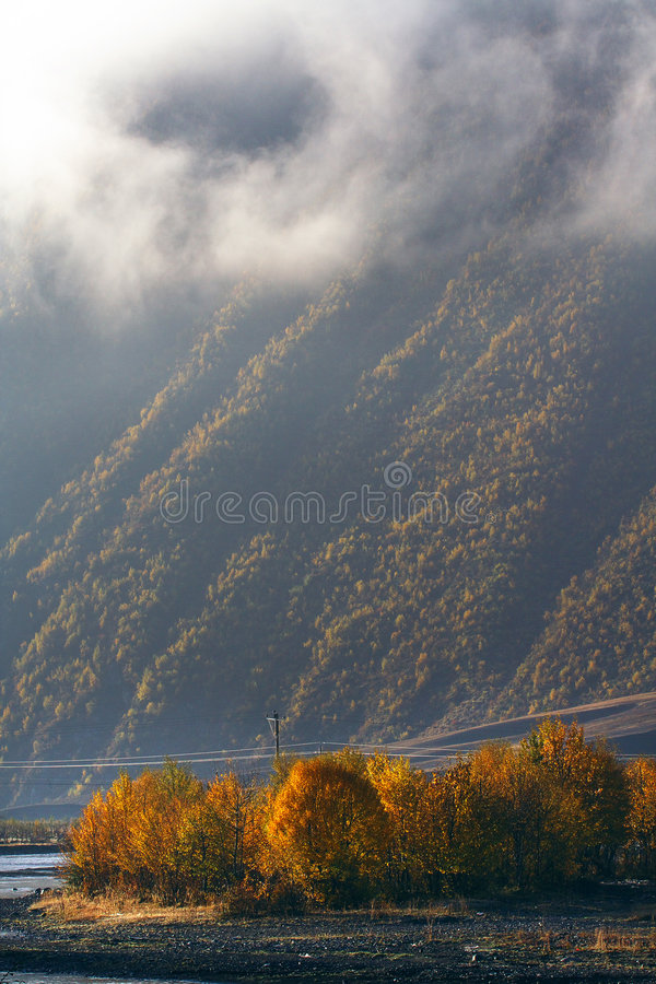 Download Altiplano morning stock image. Image of brume, fine, autumn - 6255009