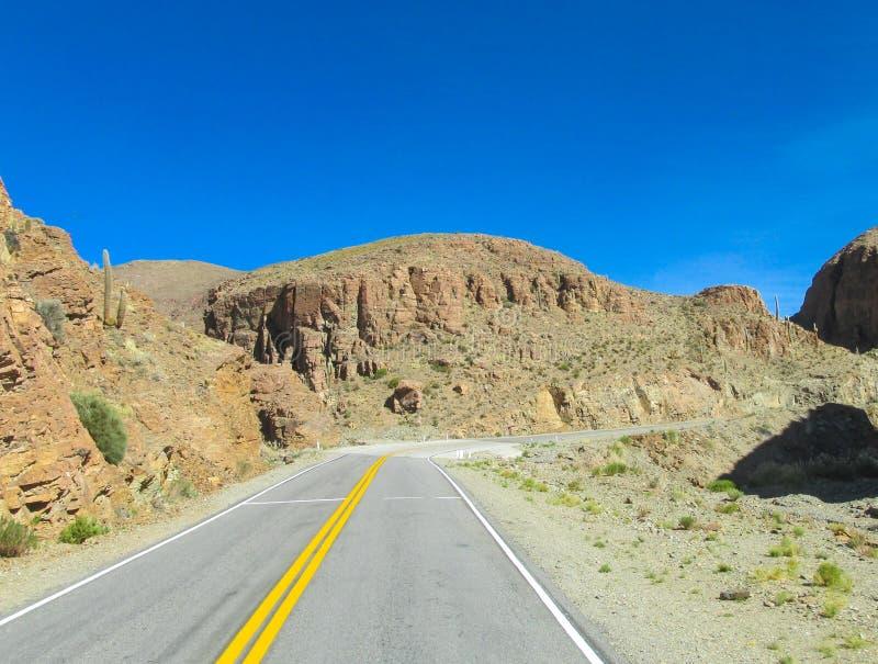 Altiplano pustynny suchy krajobraz i asfaltowa droga zdjęcie royalty free