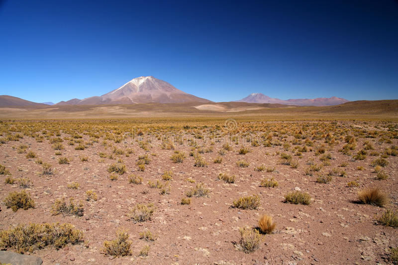 Download Altiplano volcano stock image. Image of isolated, andes - 26200543