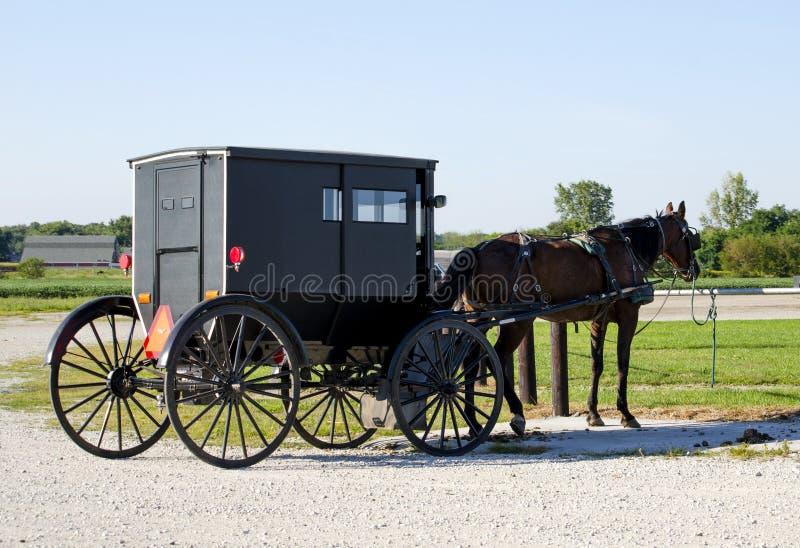 Altmodisches amisches Pferd und Buggy stockfotos