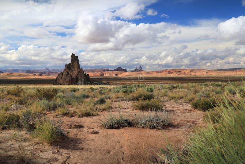 Alto deserto dell'Arizona fotografia stock libera da diritti