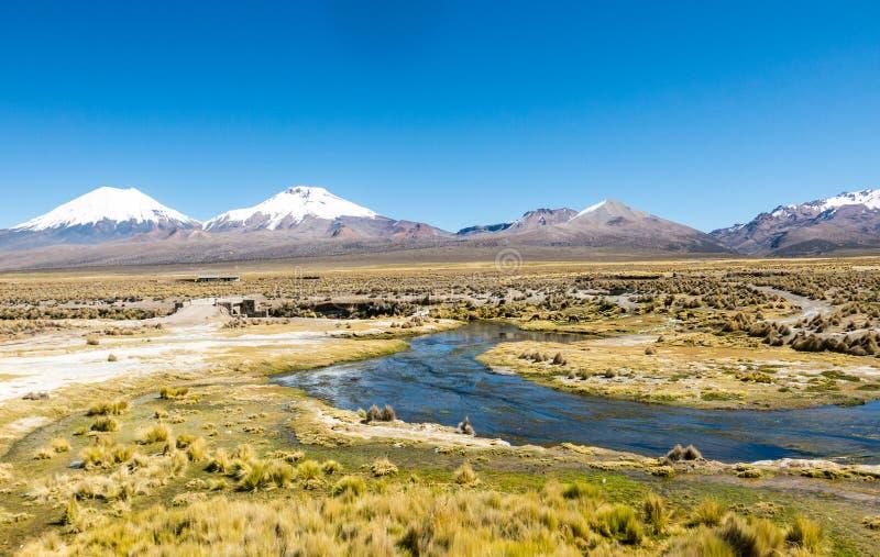 Alto paesaggio andino della tundra nelle montagne delle Ande fotografie stock