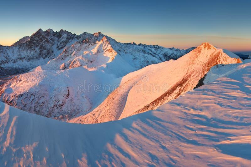 Alto panorama de la cordillera de Tatras del invierno con muchos picos y cielo claro de Belian Tatras Día soleado encima de las m fotos de archivo libres de regalías