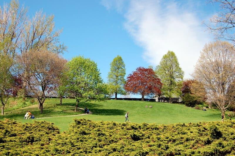 Alto parco - Toronto immagine stock