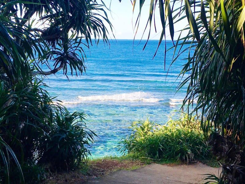 Alto por la playa fotos de archivo