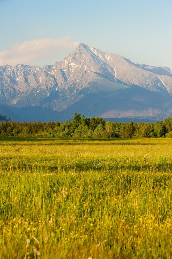 Alto Tatras, Slovacchia fotografie stock libere da diritti