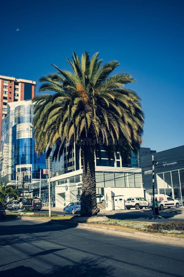 Alto urbano de la luz del día de la visión fotos de archivo libres de regalías