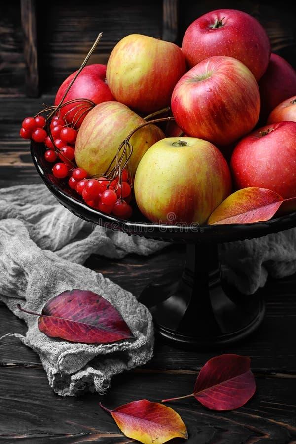 Alto vaso con le mele immagine stock libera da diritti