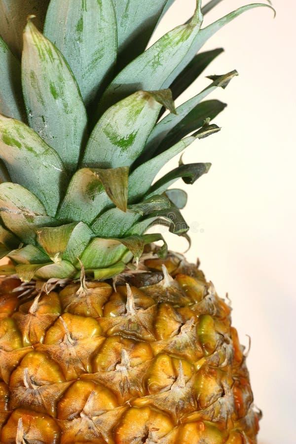 Alto vicino dell'ananas immagine stock libera da diritti
