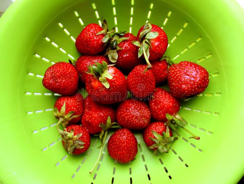 Alto vicino della fragola Le bacche rosse della vitamina fresca sono a dieta l'alimento saporito dell'estate vegetariana immagini stock