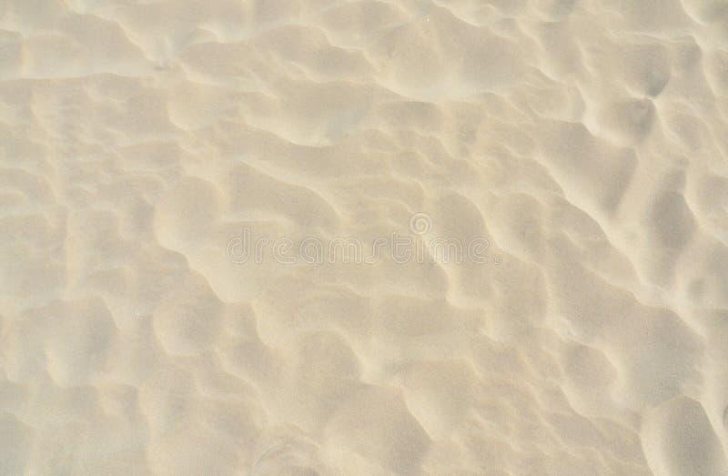 Alto vicino della sabbia immagine stock