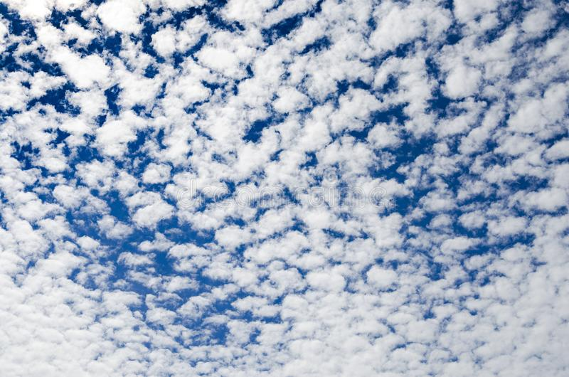 Altocumulus clouds in the blue sky stock photography