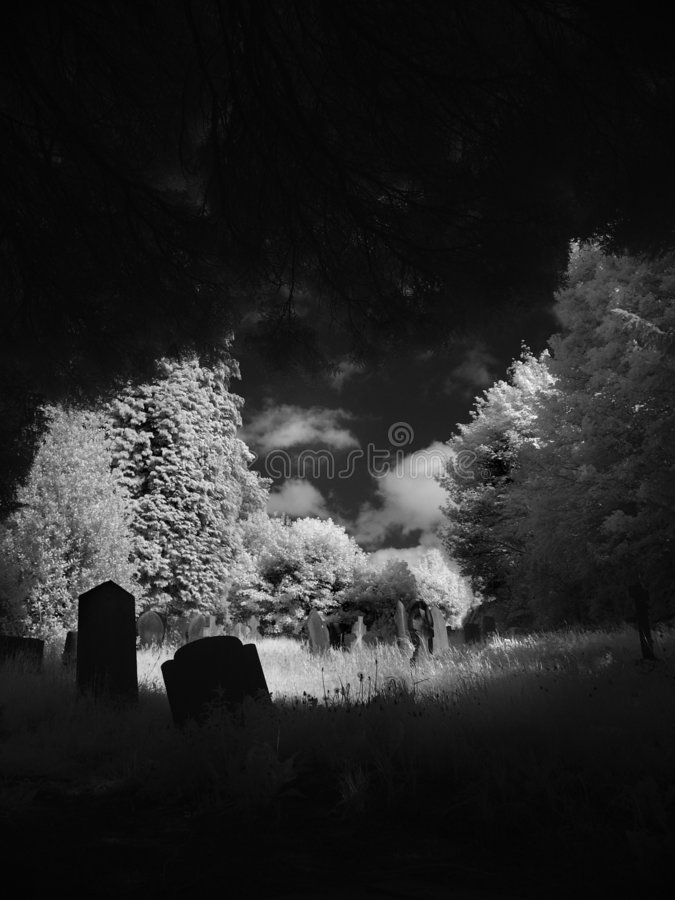 alton na cmentarz. obraz royalty free