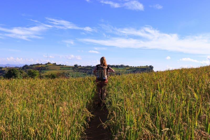 Altopiani di Kalaw, Myanmar, il 18 novembre 2019 - viste sbalorditive degli altopiani di Kalaw, come aumenti turistici da Kalaw a immagini stock