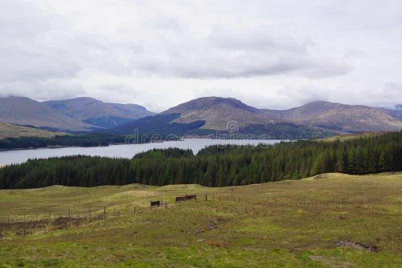 Altopiani scozzesi - bello paesaggio immagini stock libere da diritti