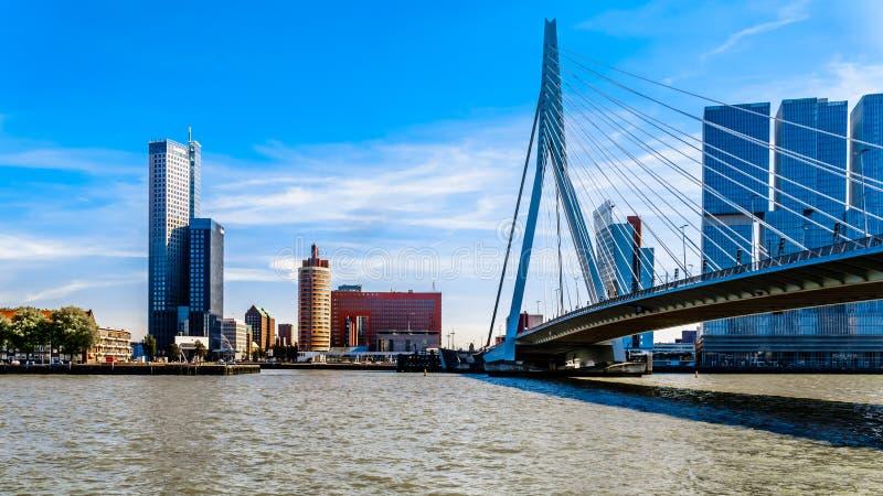 Altos edificios de la subida en Holland Amerikakade con Erasmus Bridge Cable-permanecido sobre el río de Nieuwe Mosa en Rotterdam fotografía de archivo