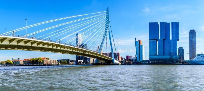 Altos edificios modernos de la subida con Erasmus Bridge Cable-permanecido sobre el río de Nieuwe Mosa en Rotterdam foto de archivo libre de regalías