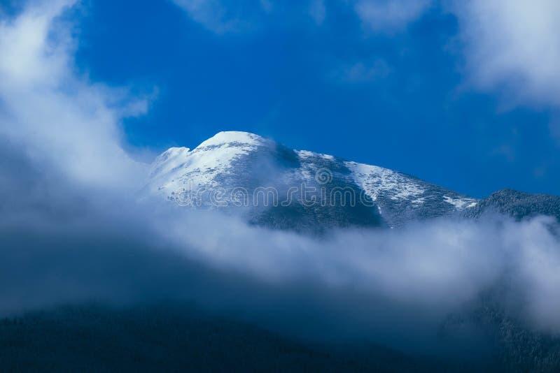 Altos picos de las montañas de niebla hermosas cubiertos con nieve e hielo foto de archivo