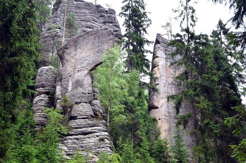 Altos rocas y árboles grises altos en parque nacional imagen de archivo libre de regalías