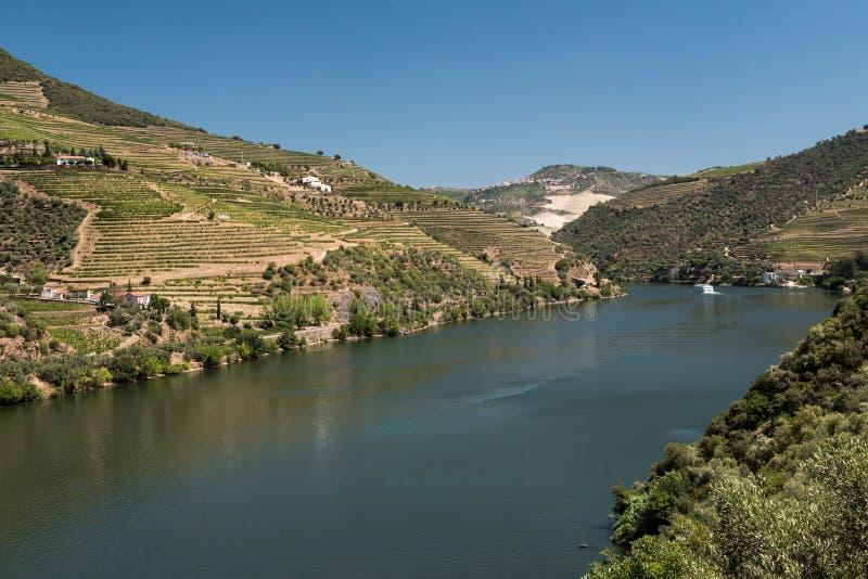 Altowy Douro winnica i rzeka, Portugalia obraz stock