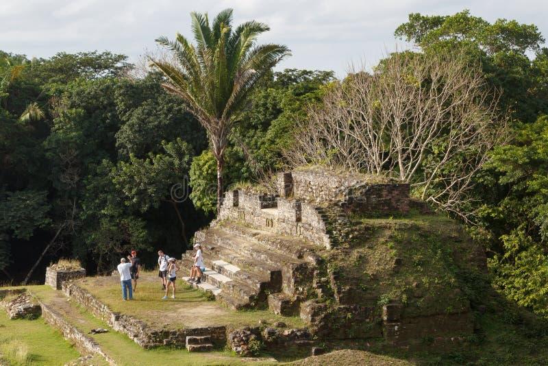 Ruins of the ancient Mayan site. ALTUN HA / BELIZE - JANUARY 2015: Ruins of the ancient Mayan archaeological site Altun Ha, Belize stock images