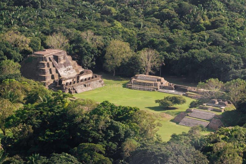 Altun Ha, maya ruïnes stock afbeelding