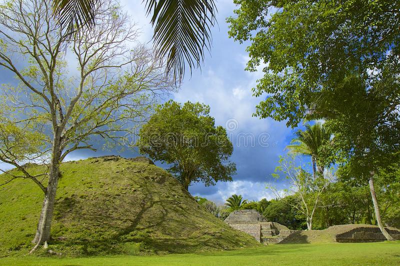 Altun Ha-plaats in Belize royalty-vrije stock fotografie