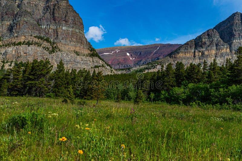 Altyn Peak en Apikuni Mountain royalty-vrije stock fotografie