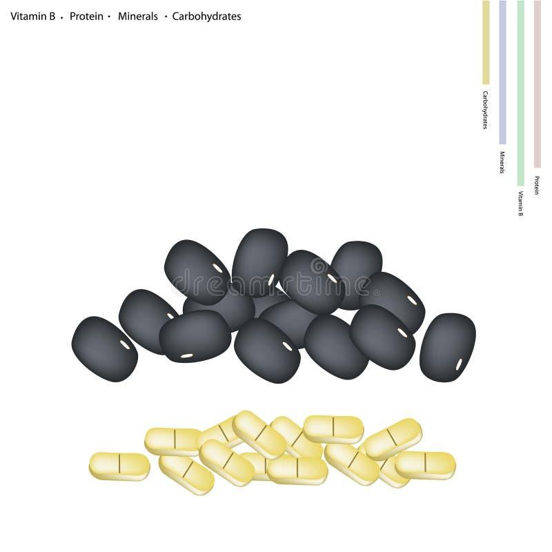 Alubia negra con la vitamina B, la proteína, los minerales y los carbohidratos stock de ilustración