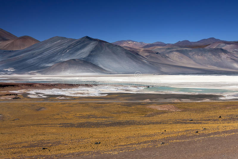 Alues Calientes - Atacama Desert - Chile stock image