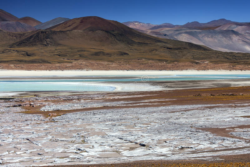 Alues Calientes - Atacama Desert - Chile royalty free stock image
