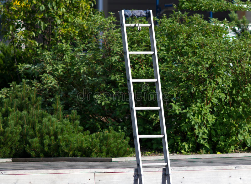 Download Aluminum ladder stock photo. Image of upright, green - 20338700