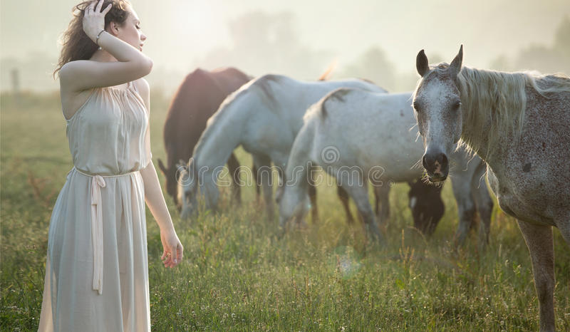 Aluring brunette walking next to the horses royalty free stock photos