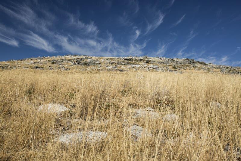 Alvão山在葡萄牙,雷亚尔城区 免版税库存照片