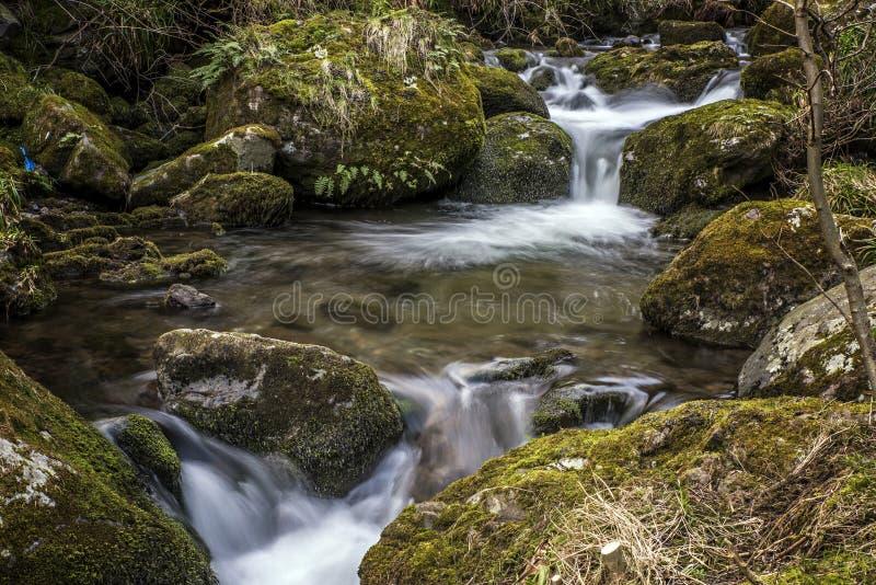 Alva Glen River. In Alva Scotland royalty free stock images