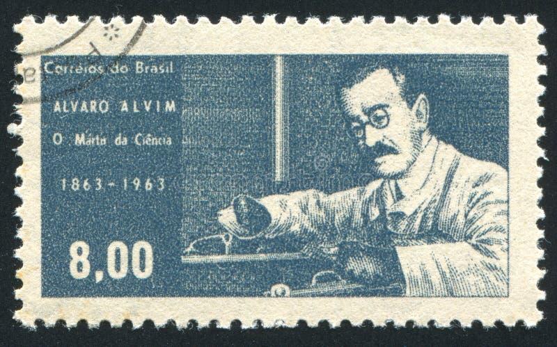 Alvaro Alvim ha stampato dal Brasile fotografie stock libere da diritti