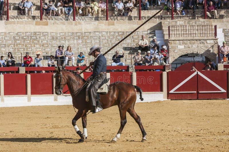 Alvaro Montes, ταυρομάχος στο ισπανικό garrocha μαγισσών πλατών αλόγου ( στοκ φωτογραφία με δικαίωμα ελεύθερης χρήσης