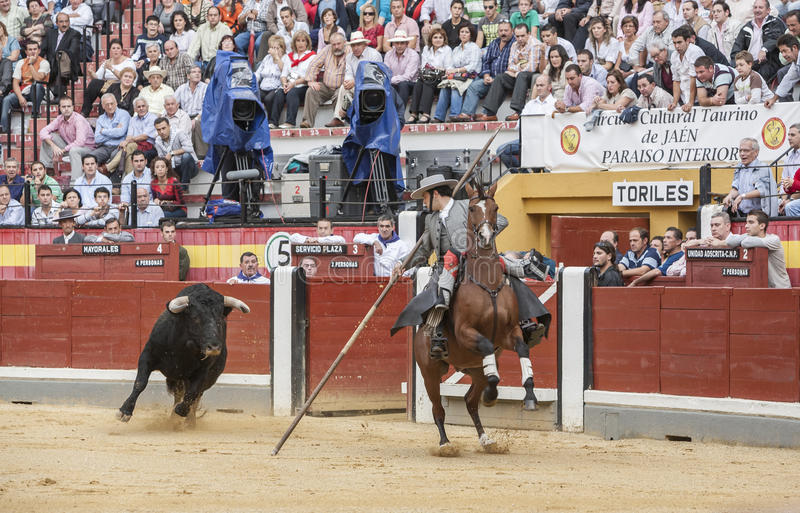 Alvaro Montes, ταυρομάχος στο ισπανικό garrocha μαγισσών πλατών αλόγου ( στοκ εικόνα με δικαίωμα ελεύθερης χρήσης