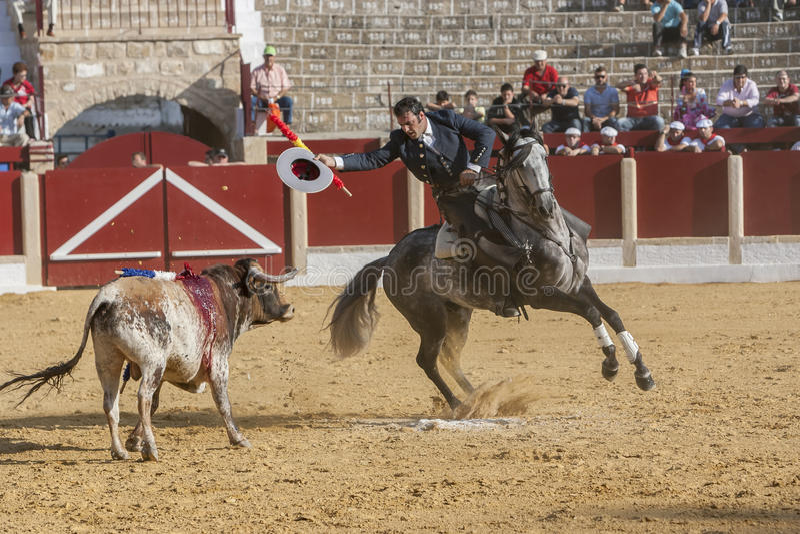 Alvaro Montes, bullfighter on horseback spanish, Ubeda, Jaen, Spain. Ubeda, SPAIN - September 29, 2011: Alvaro Montes, bullfighter on horseback spanish, in the stock photos