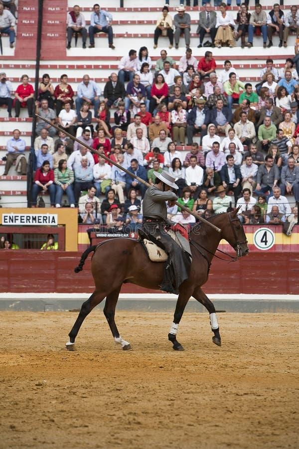 Alvaro Montes, bullfighter on horseback spanish witch garrocha. (blunt lance used on ranches), Coso de la Alameda, Jaen, Spain, 13 october2008 stock image