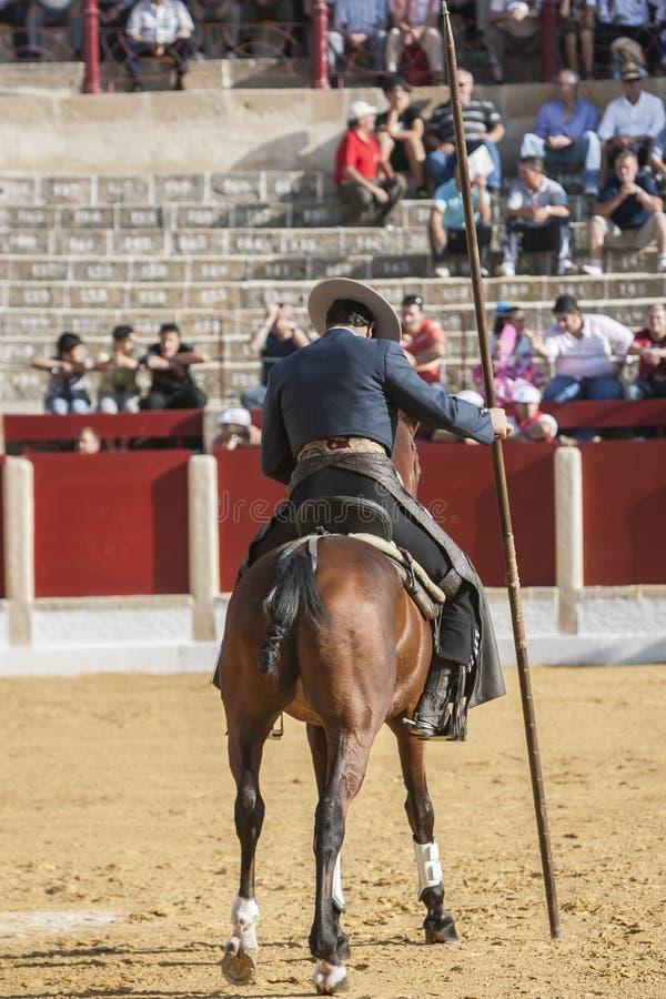 Alvaro Montes, bullfighter on horseback spanish witch garrocha (. Ubeda, SPAIN - September 29, 2011: Alvaro Montes, bullfighter on horseback spanish witch royalty free stock photos