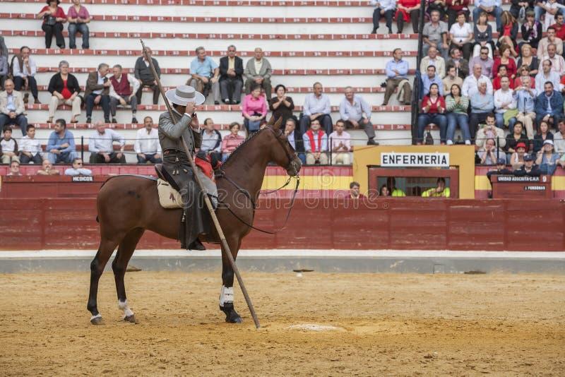 Alvaro Montes, bullfighter na horseback czarownicy hiszpańskim garrocha ( fotografia royalty free