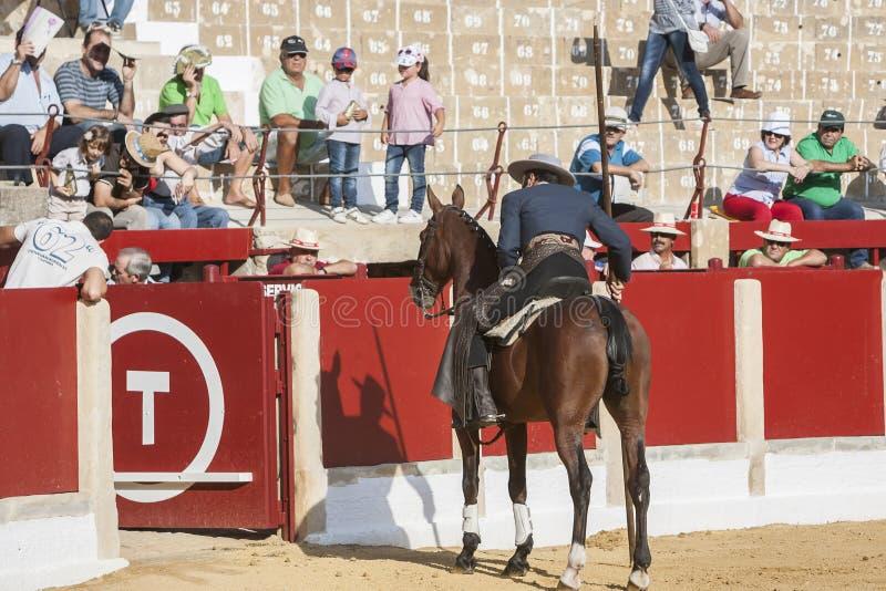Alvaro Montes tjurfäktare på spansk häxagarrocha för hästrygg ( arkivfoto