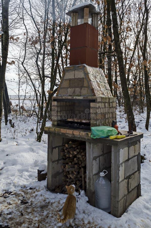 Alvenaria do tijolo do fogão para o assado na floresta nevado com os bifes suculentos que cozinham em uma grade sobre brasas imagens de stock royalty free