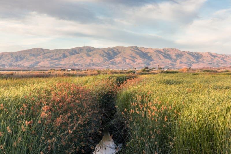 Alviso Sumpfgebiete und Diablo Mountain Range stockbilder