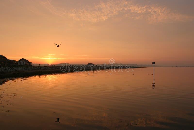 Download Alvorecer imagem de stock. Imagem de dorset, costa, marinho - 58503