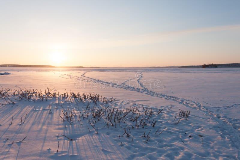 Alvorecer do inverno no lago fotografia de stock