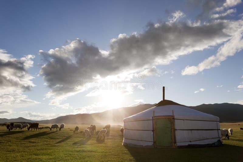 Alvorecer em um Ger. Mongolia fotografia de stock