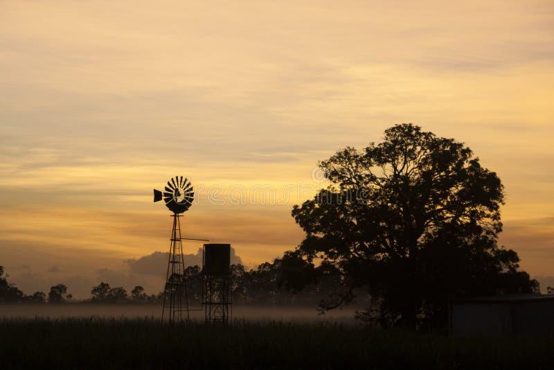 Alvorecer enevoado tropical com moinho de vento fotos de stock royalty free